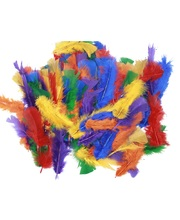 Turkey Feathers Assorted Colours - 250pcs