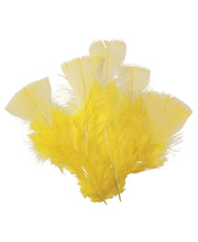 Feathers - Yellow 150pcs