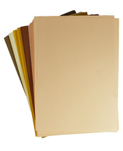 Cover Paper 125gsm Skin Tones 250pk - A4 Assorted
