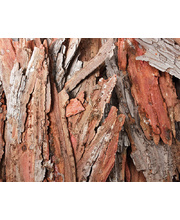 Bark Pieces - Assorted 250g