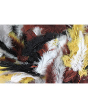 Feathers Assorted Natural Colours - 250pcs