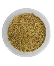 Craft Wheat - 20kg