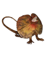 Australian Animal Replica - Frilled Neck Lizard 17cm