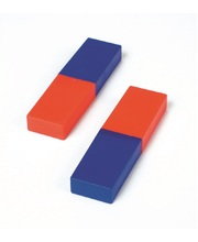 Shaw Plastic Cased Two Tone Magnets - 2pk