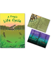 Big Book - A Frog's Life Cycle