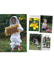 Big Book - Let's Learn About Bees
