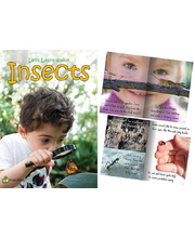 Big Book - Let's Listen and Learn About Insects