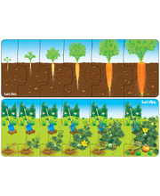 Tuzzles Plant Growth Sequence - Set of 2