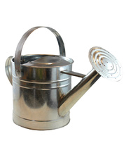 Twigz Watering Can - Galvanised Steel 3 Litre