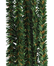 >Pine Stems - 50pcs