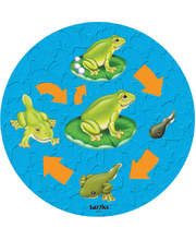 Tuzzles Life Cycle Raised Puzzle - Frog 10pcs