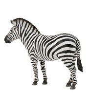 CollectA Wild Life Replica - Common Zebra 12 x 9.5cmH