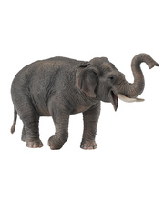 Collecta Wild Life Replica - Asian Elephant 15 x 8.5cmH