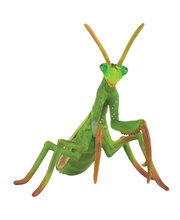CollectA Insects & Bug Life Replica - Praying Mantis 11 x 8cmH