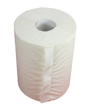 Style Roll Towel - 80m x 16 Rolls (STYLE-800)