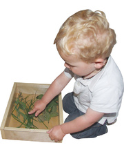 *SPECIAL: Science & Exploration Tray