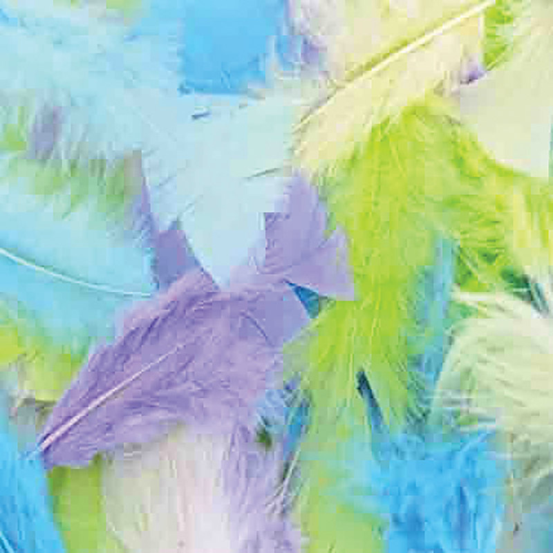 Feathers Turkey Assorted Pastel Colours - 250pcs