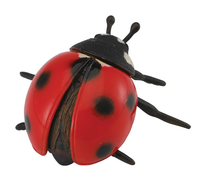 CollectA Insects & Bug Life Replica - Ladybird 5.5 x 3cmH